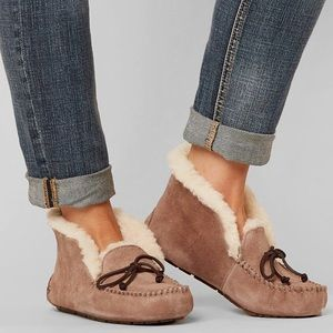 ✨NEW UGG ALENA Color:FAWN